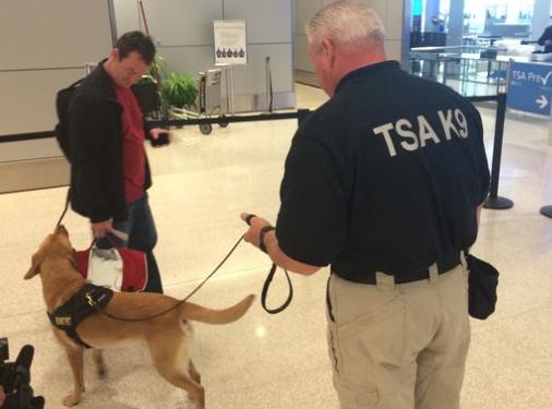 TSA Canine picture
